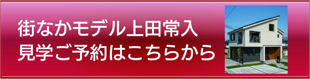 街なかモデル上田常入.jpg