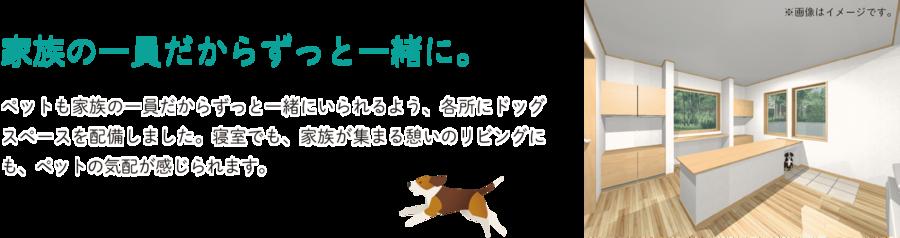 愛犬家ドッグスペース_1.png