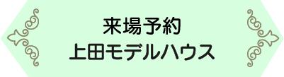 上田モデル (2).jpg
